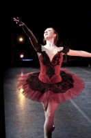Sunday Snapshot: Paquita From The Wings