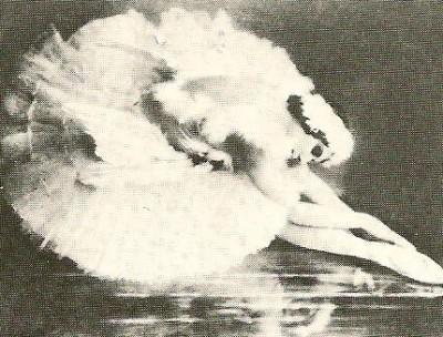 The Dying Swan - Pavlova