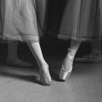Pointe tendu - slipper and shoe