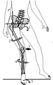 Knees, Please: Why A Dancer Should Walk Like A Man