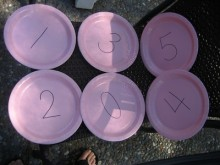 Numbered paper plates